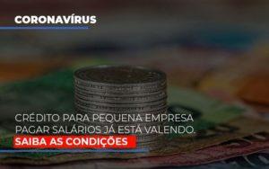 Credito Para Pequena Empresa Pagar Salarios Ja Esta Valendo Contabilidade - Contabilidade em Itaperuçu- Ribas Contabilidade