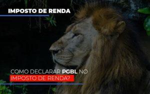 Ir2020:como Declarar Pgbl No Imposto De Renda Contabilidade - Contabilidade em Itaperuçu- Ribas Contabilidade